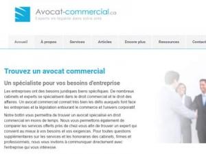 Avocat droit commercial et des affaires